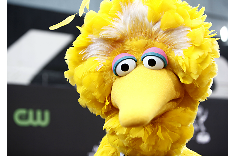'Sesame Street' in Afghanistan debuts new puppet with big ...