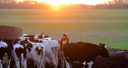 Is antibiotic use for livestock losing its cache?