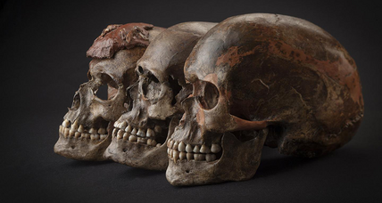 Game of bones? Ancient genes uncover prehistoric European drama.