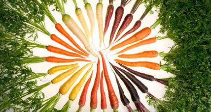 Why are carrots orange?