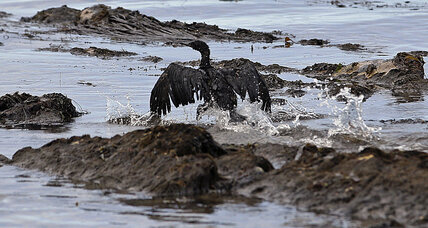 One year after Santa Barbara oil spill, California presses criminal charges (+video)