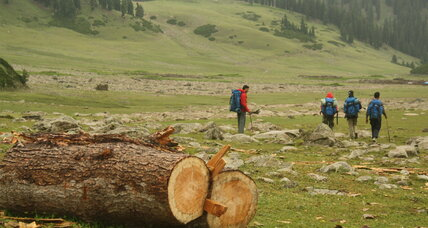 How Pakistan is leading efforts to stop deforestation