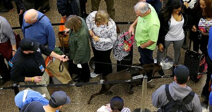 TSA calls in the hounds to speed security lines as air travel soars