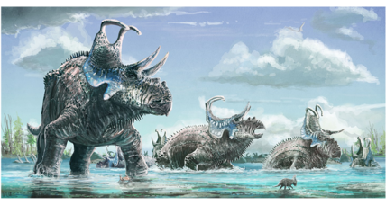 Two new species of horned dinosaur discovered. Why the dino diversity?