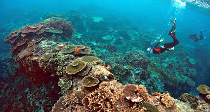 Why Australia removed Great Barrier Reef from UN climate report