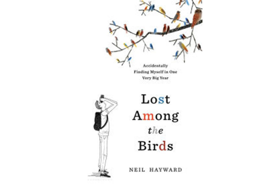 'Lost Among the Birds' tells a story of salvation through