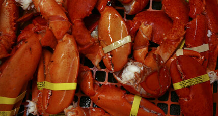 Why is Europe trying to ban American lobsters? (+video)