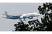 Why Airbus wants slime from green algae to fuel its planes