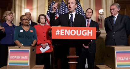 Senate stalemate over gun control reflects divided America