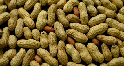 Will a peanut giveaway help or hurt Haitians?
