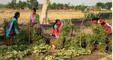 With men gone, women shake up farming in rural Nepal