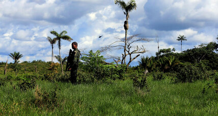 As FARC signs cease-fire, will Colombia's cocaine trade decrease?