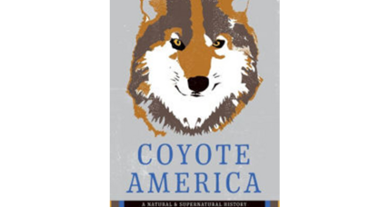 'Coyote America' takes a fresh look at a well known enemy