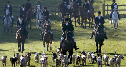 Could a potential PM bring old-style fox hunts back to Britain?