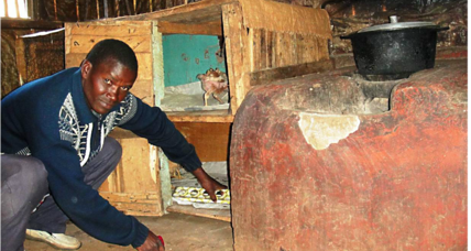 Efficient cookstoves save trees – and chickens – in Kenya