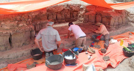 How did ancient butchers work? 250,000-year-old tools offer insight
