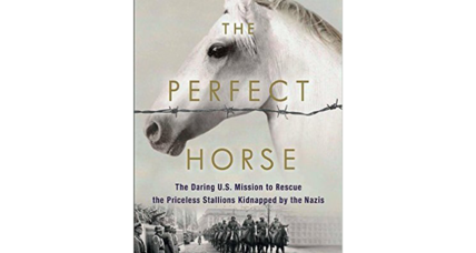 'The Perfect Horse' is the perfect World War II rescue story