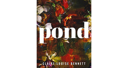 'Pond' is a cool, curious dive into a world of minutiae