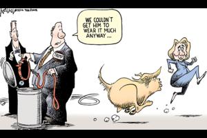 Politcal comic strips