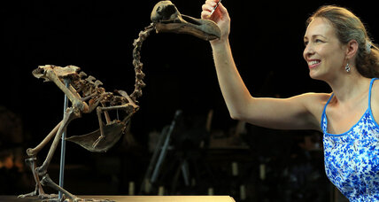 Dodo devotees, here's your chance: Rare assembled skeleton up for auction