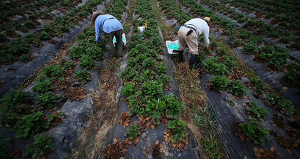 California lays down 'historic marker' for farm workers