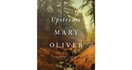 'Upstream' places poet Mary Oliver in her 'arena of delight'