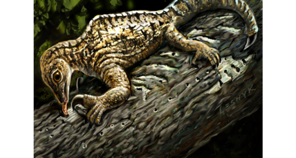 How a bizarre Triassic reptile could change what an arm looks like