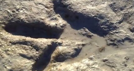 Beach-loving dinos? Giant preserved ancient footprints found in Australia.