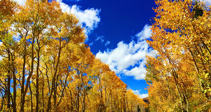 Five amazing places to peep fall foliage on a budget