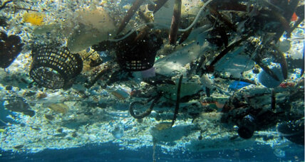 Great Pacific Garbage Patch is denser than previously thought