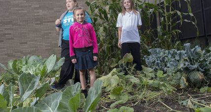 Celebrate National Farm to School Month this October