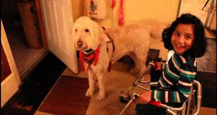 Fry v. Napoleon: Disabled girl takes battle for service dog to Supreme Court