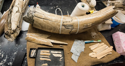 Michigan mammoth bones: Lessons about early North American settlers