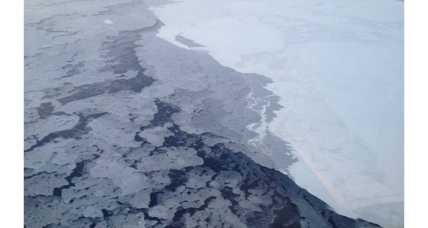 Calculating your role in melting Arctic sea ice: How the CO2 emissions add up.