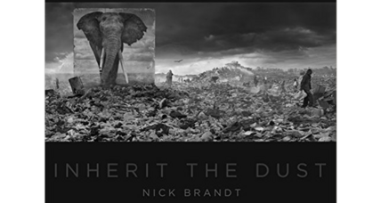 'Inherit the Dust' offers startling images to remind us of the threats to wildlife