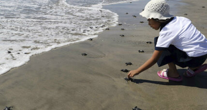 Mexico jumps on the 'big reserve' trend of ocean conservation