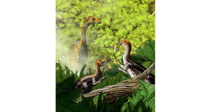 Did these baby dinosaurs munch meat while their parents pecked plants?