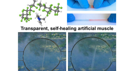 Scientists develop 'Wolverine'-inspired material that heals itself