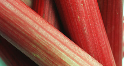 How holy a grail can rhubarb really be?
