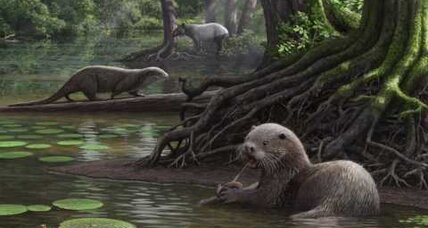 Wolf-sized prehistoric otter: You really oughter check out this critter