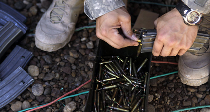 Seed-embedded bullets sprouting flowers: Can the US Army make that a reality?