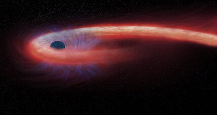 Slow food? Black hole taking entire decade to gobble star.