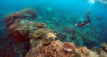 Latest Great Barrier Reef threat: coal dust