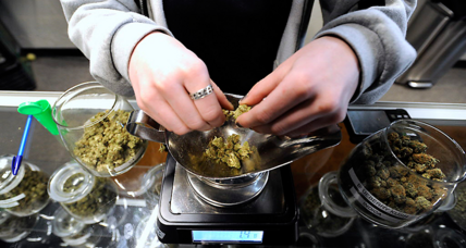 Why is Colorado risking hundreds of millions to protect its marijuana industry?