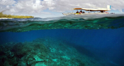 Populism's effect on mainstream parties, Government must take action to save coral reefs, The influence of 'Brexit' in Asia, Combating famine in So...
