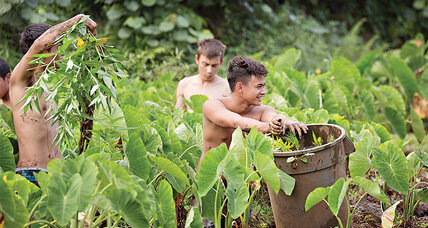 Using a taro patch in Hawaii, this couple teaches the islands' values to youths