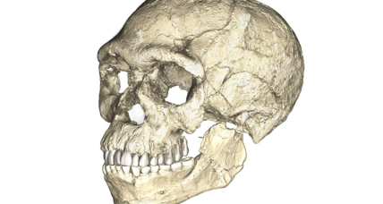 Just how Earth-shattering are those 300,000-year-old Homo sapiens fossils?