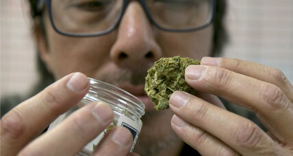 New study links recreational marijuana to increase in car crashes