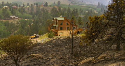 Utah representative claims logging could have lessened forest fire damage