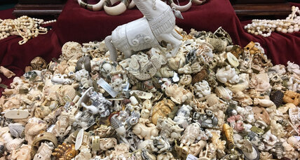 'Ivory Crush' demonstrates New York's resolve to smash illegal trade